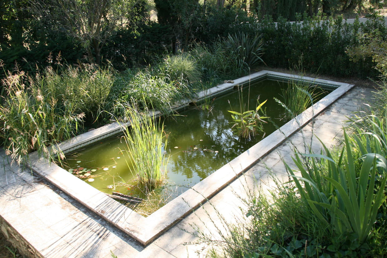 Construire Son Bassin De Jardin bassin de jardin : installer, aménager et entretenir un