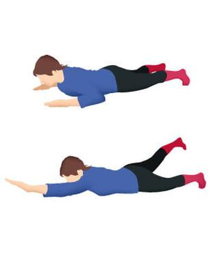 musclez votre dos avec quelques exercices faciles.