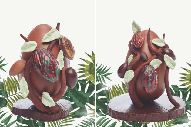 L'œuf cacaoyer de Jadis et Gourmande