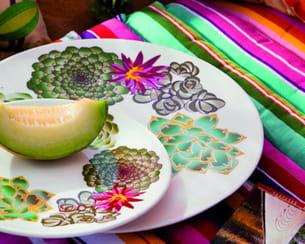 Cactus et cie - Vaisselle genevieve lethu ...