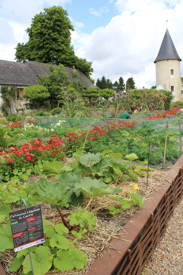 jardin-potager-concours-national
