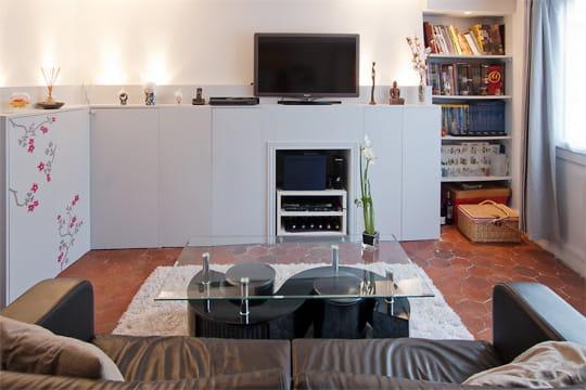 Appartement XVIIIe modernisé par MyHomeDesign : coin télé