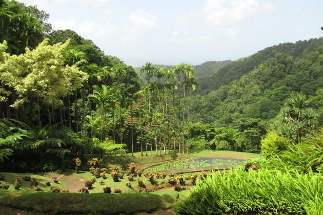 Le jardin de Balata, incroyable jardin botanique