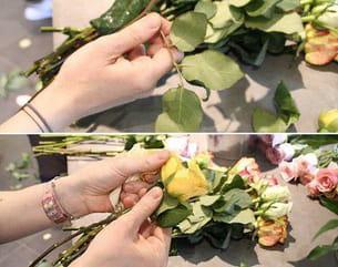 il faut tout d'abord préparer les roses et le feuillage.