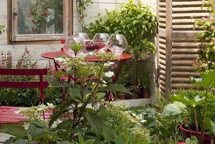 Jardin urbain écologique