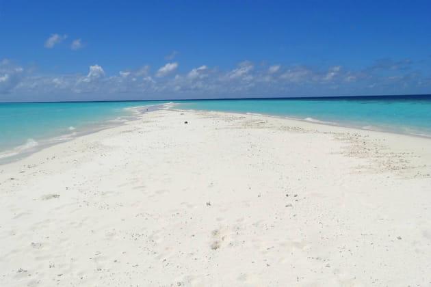 La magie d'un banc de sable au milieu de nulle part