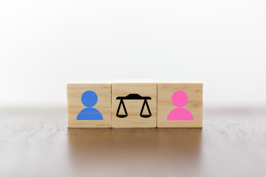 Haut Conseil à l'égalité: 6démissions sur fond de normes sexistes