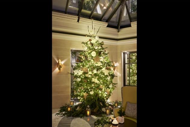 Le sapin de Noël du Burgundy