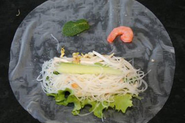 Rouleaux de printemps au wasabi et piment