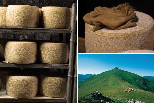 Le Cantal, un fromage deux fois millénaire