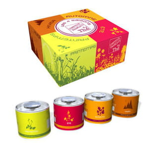 thé 4 saisons du comptoir français du thé