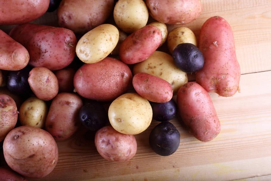 Quelles variétés de pommes de terre pour quel plat?