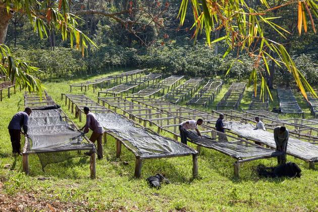 A l'abordage du Lac Kivu