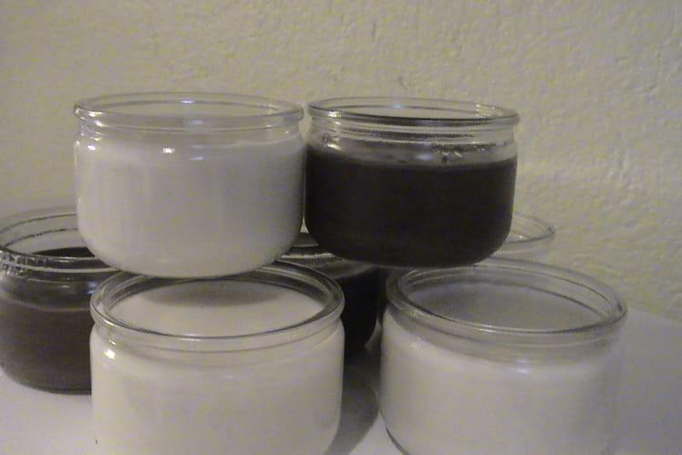Crèmes à la vanille et au chocolat (façon Danette)