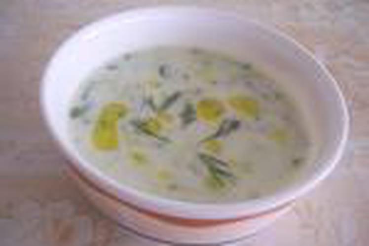 Soupe de concombre froide aux noix (cacik)