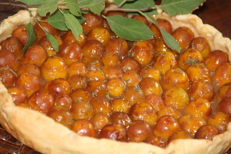Tarte simplissime aux mirabelles aromatisée miel, citron et sarriette