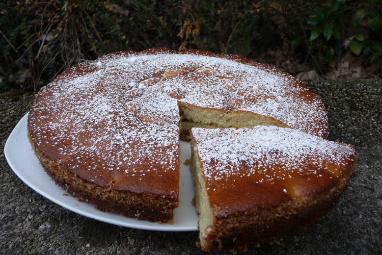 Gâteau au fromage blanc moelleux et rapide