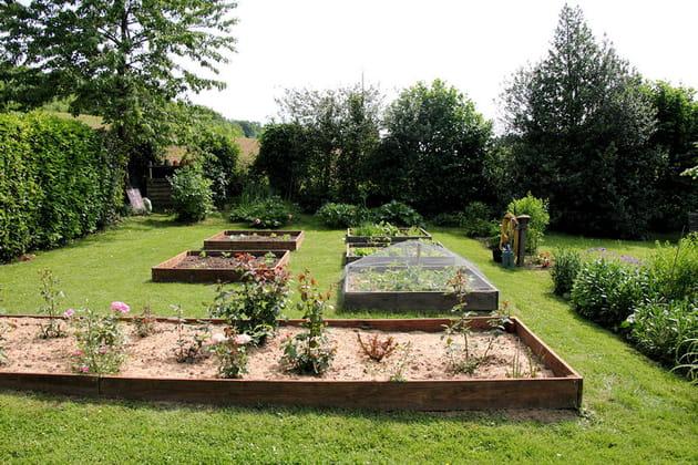 Le potager en carr for Jardin potager en carre