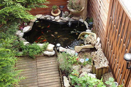 Un petit bassin bien sympa