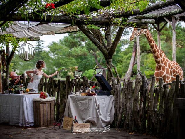 Un mariage dans un zoo: ambiance safari chic!