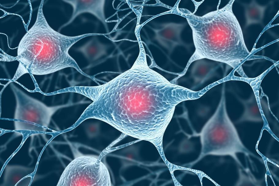 Sclérose en plaques : l'espoir d'un nouveau traitement