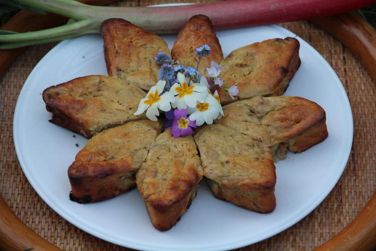 Gâteau tendre à la rhubarbe et au mascarpone