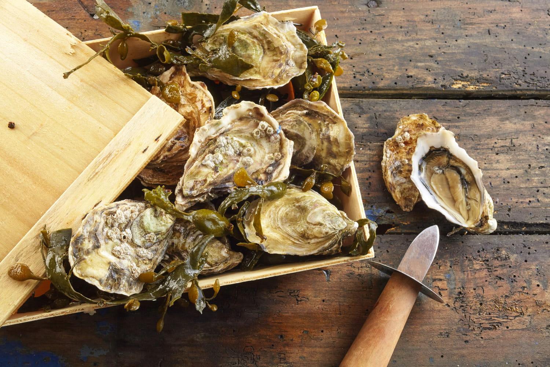 Comment ouvrir des huîtres facilementet sans se blesser?