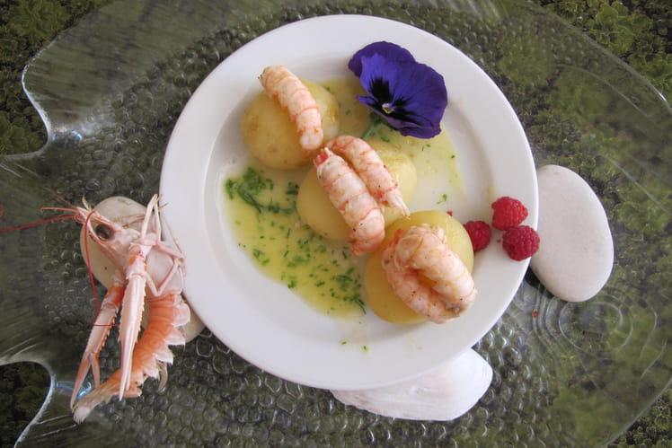 Langoustines au curry sur pomme de terre princesse amandine