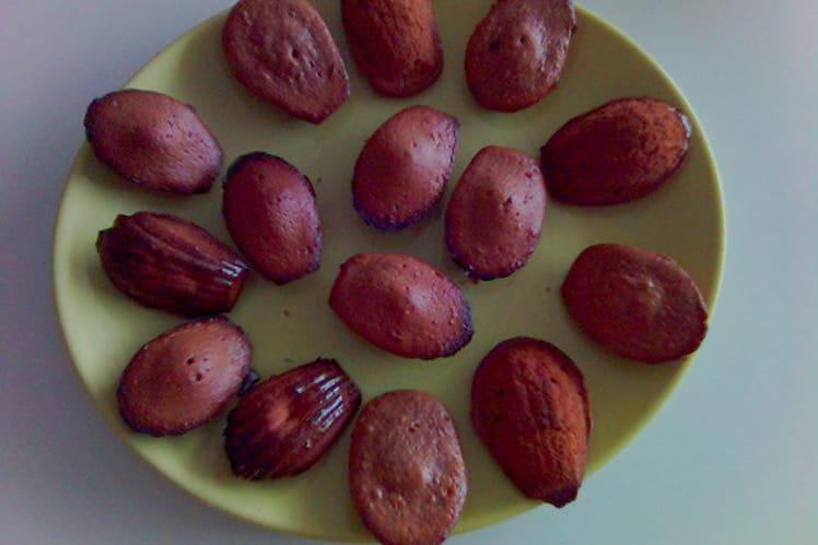 Madeleines au chocolat et au miel