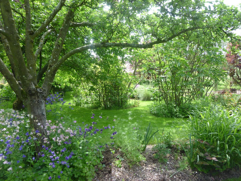 Le jardin en hiver for Jardin anglais en hiver