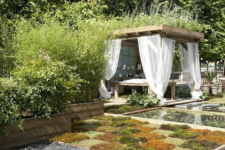 Une terrasse très végétale