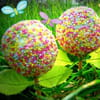 2 cake pops printaniers albane leguellec 300