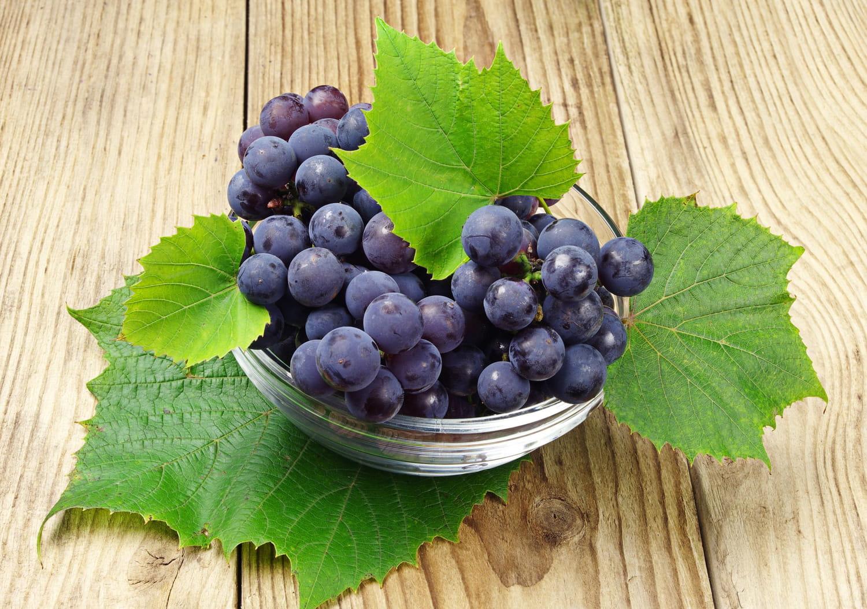 Vigne rouge: bienfaits, contre-indications, posologie