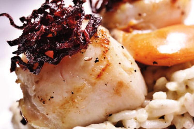 Noix de Saint-Jacques rôties, risotto au coulis de betteraves et sauce à l'orange