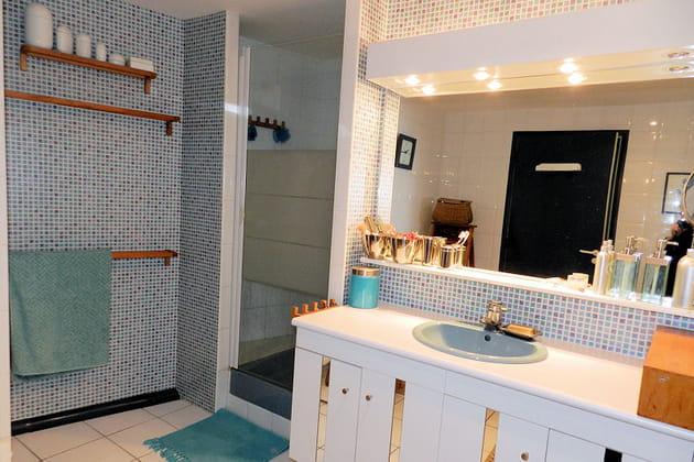 La salle de bains : douche
