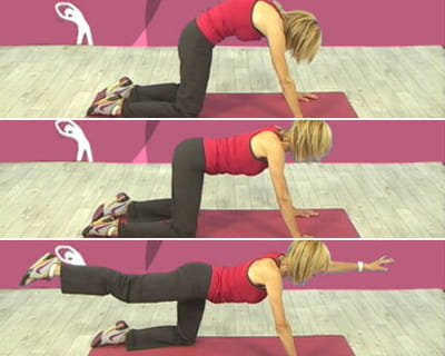 exercice 5 : le dos rond