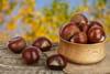 Marron, châtaigne: quelles différences, lequel se mange ou pas?