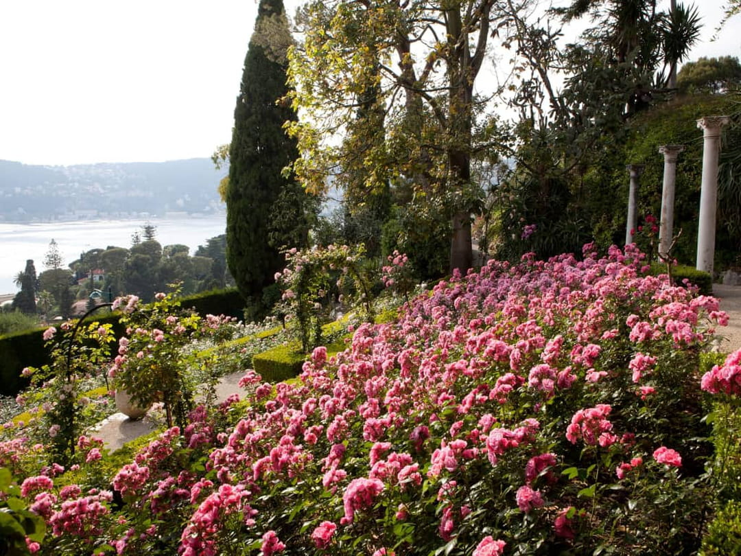 Villa Ephrussi de Rotschild jardin fleuri
