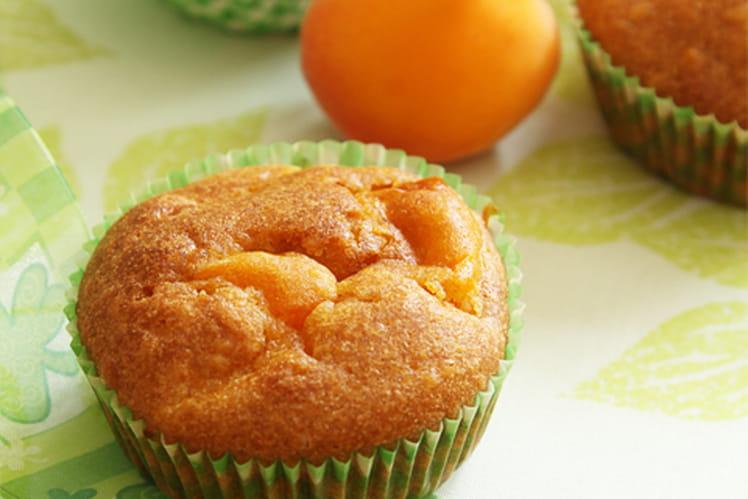 Mini cake aux abricots - Gâteau aux abricots