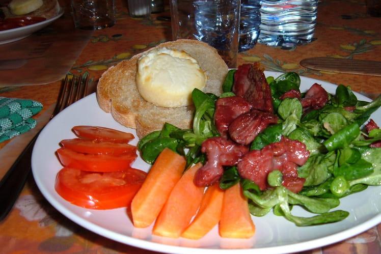 Salade de chèvre chaud aux gésiers de canard