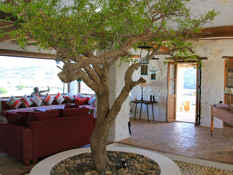 maison entre charme et tradition au maroc