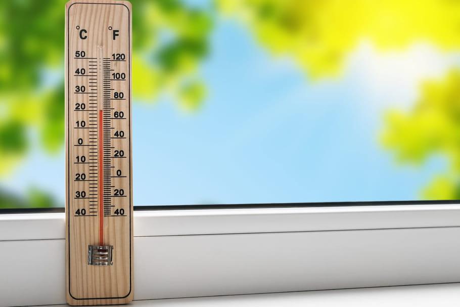 Rafraîchir la maison: solutions pour garder la fraîcheur
