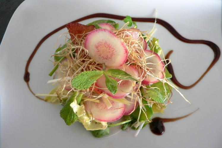Salade de printemps à l'oca du Pérou