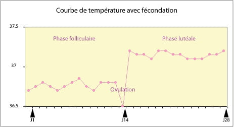 courbe de temp rature d terminer la date de l 39 ovulation sant m decine. Black Bedroom Furniture Sets. Home Design Ideas