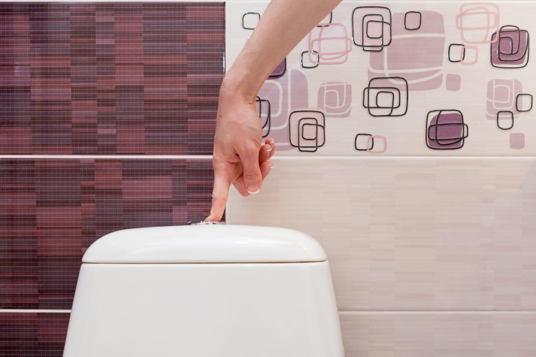 Chasse d'eau, comment bien choisir son mécanisme pour les WC?