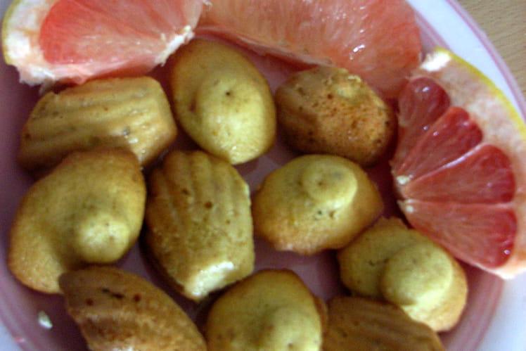 Mini madeleines au pamplemousse