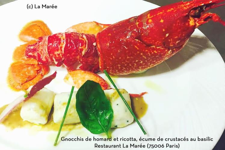 Gnocchi de homard breton et ricotta, écume de crustacés au basilic