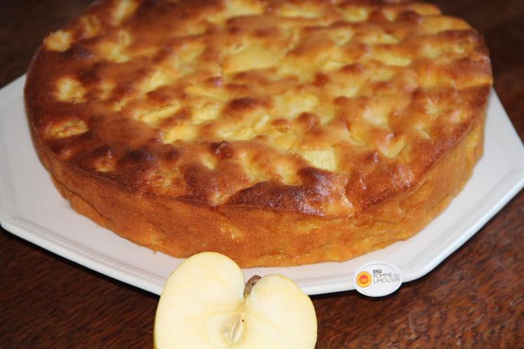 Moelleux aux pommes et au citron