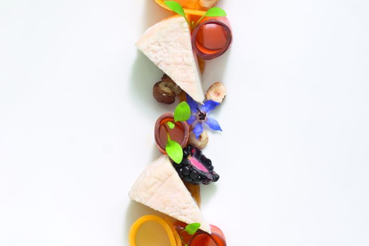 Fromage de chèvre, carottes jaunes, mûres, noisettes et chutney d'abricots