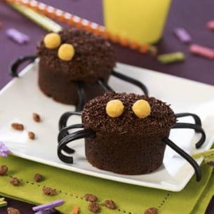 muffins araignées au chocolat